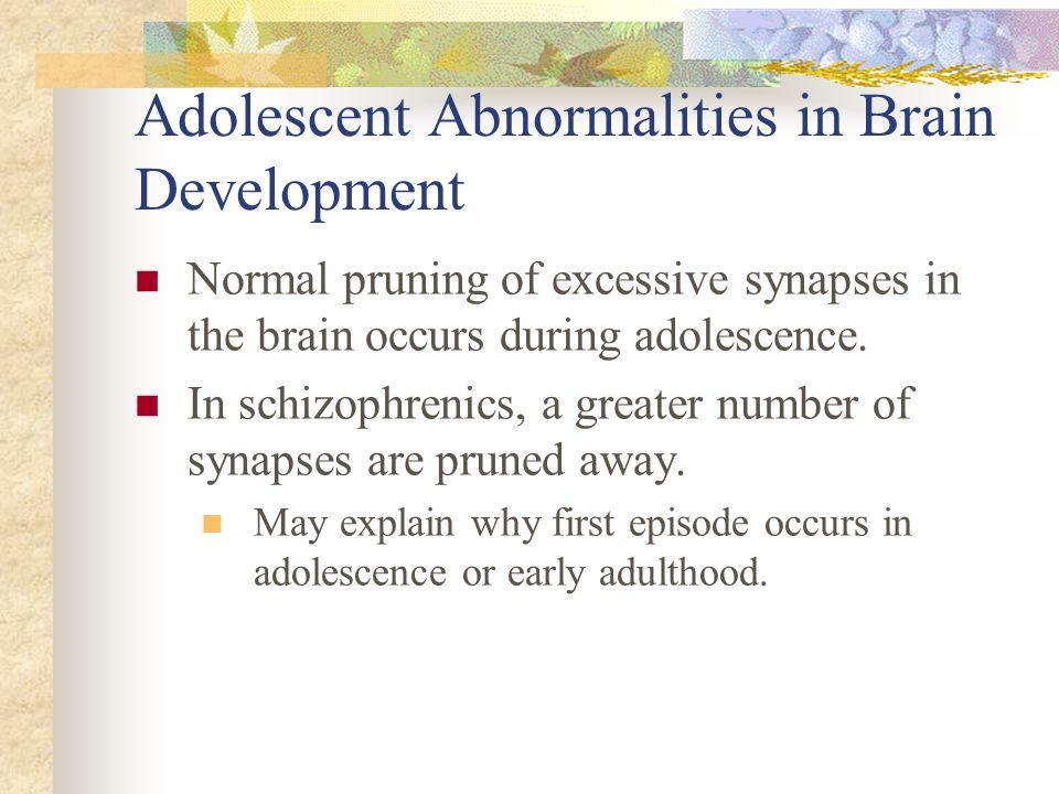 Adolescent Abnormalities in Brain Development