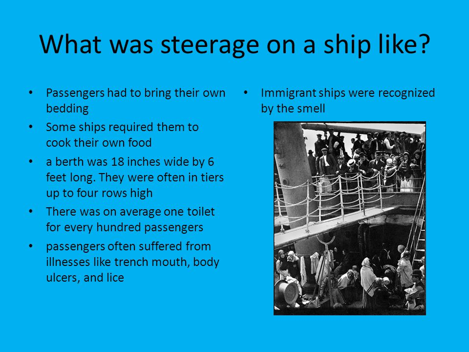 What was steerage on a ship like