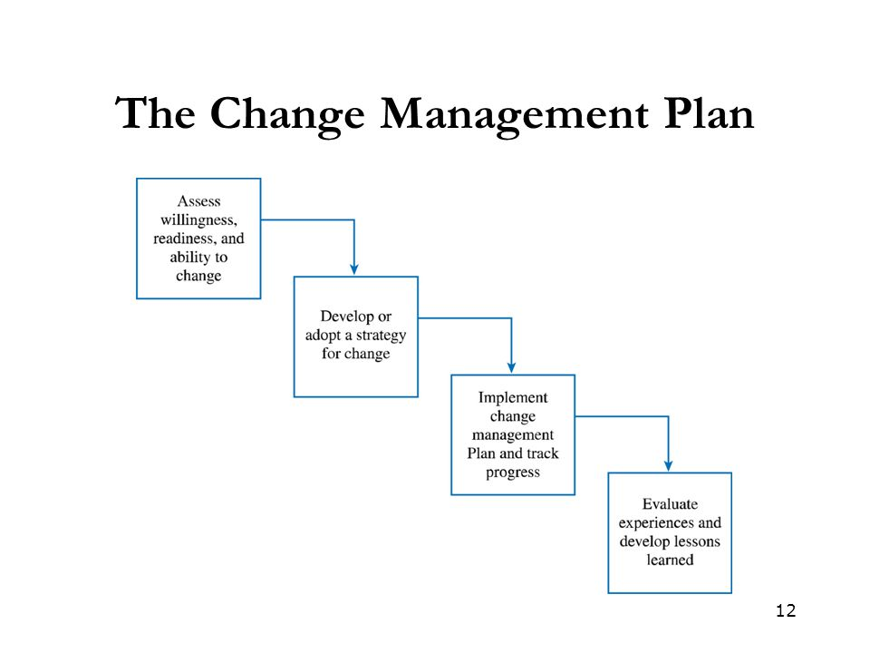 The Change Management Plan