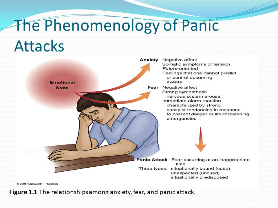 The Phenomenology of Panic Attacks