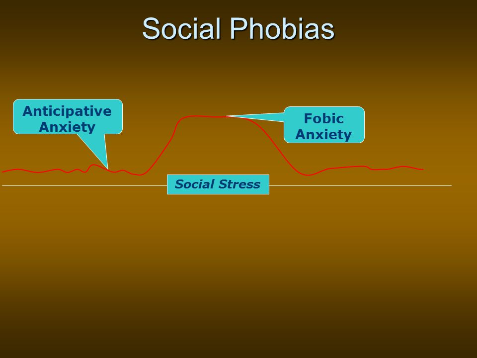 Social Phobias Fobic Anxiety Anticipative Anxiety Social Stress