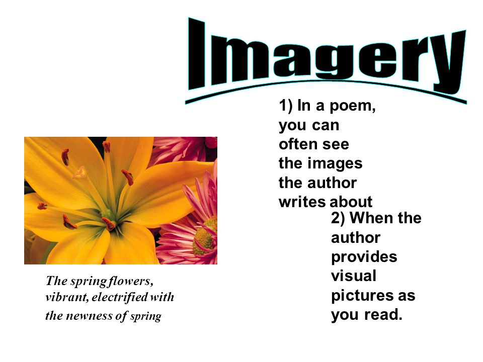 Imagery 1) In a poem, you can often see the images the author writes about. 2) When the author provides visual pictures as you read.