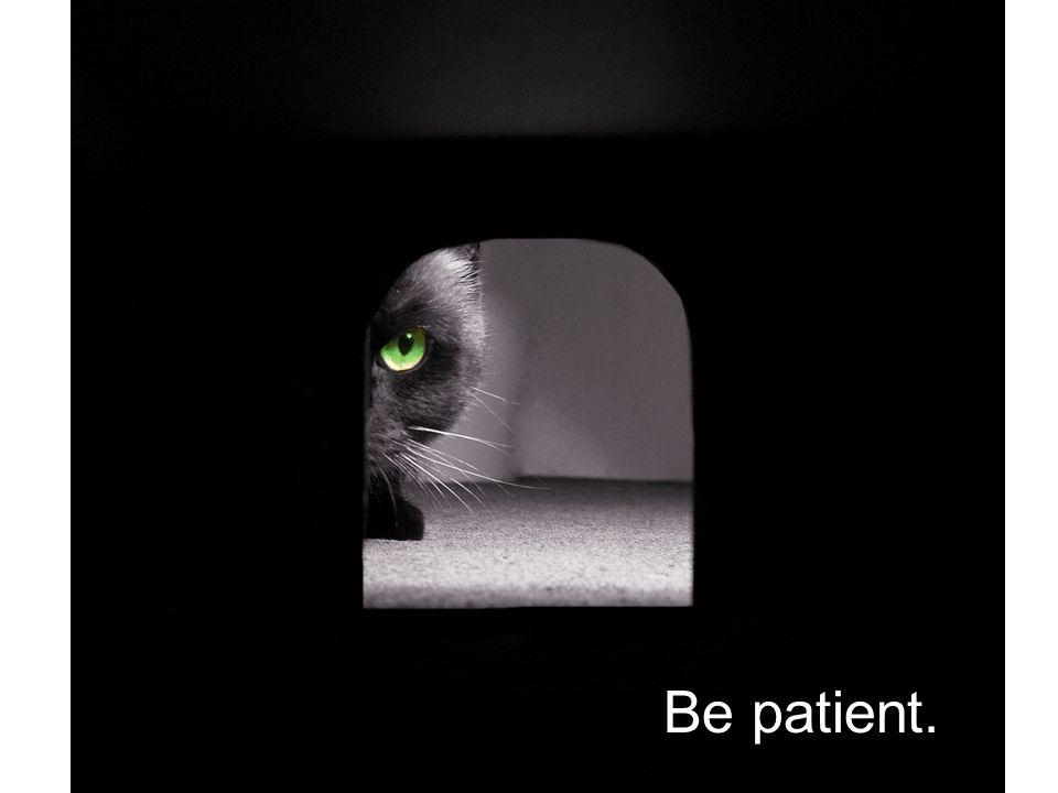Be Patient Be patient.