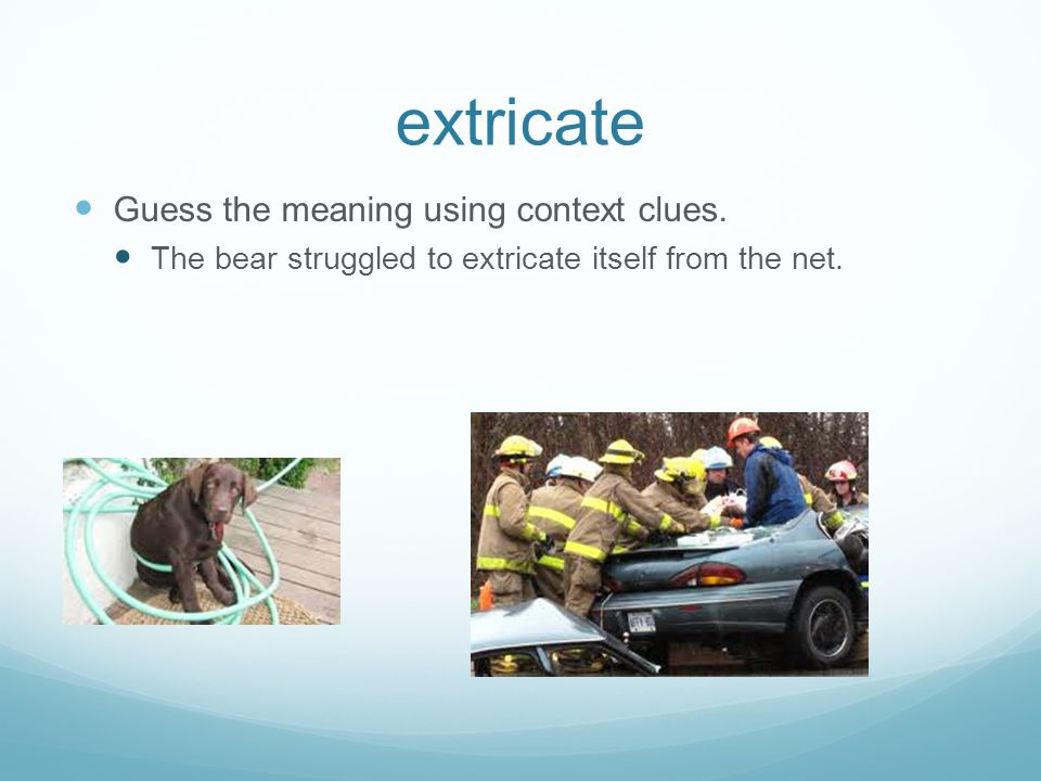 extricate Guess the meaning using context clues.