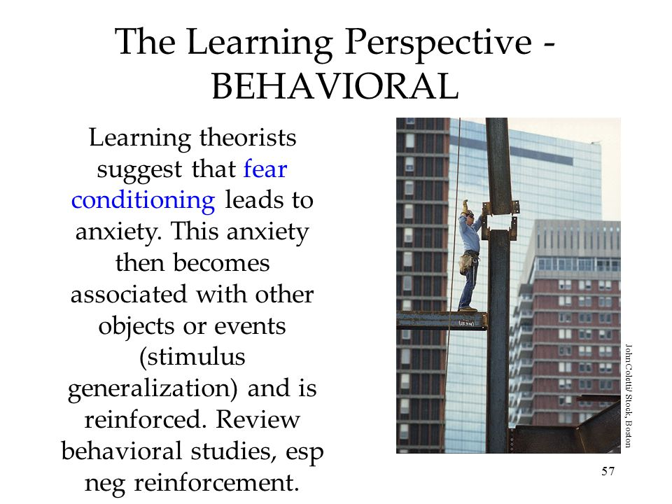 The Learning Perspective -BEHAVIORAL