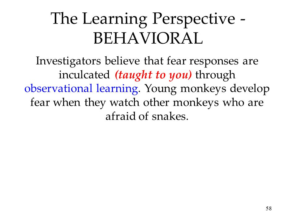 The Learning Perspective - BEHAVIORAL
