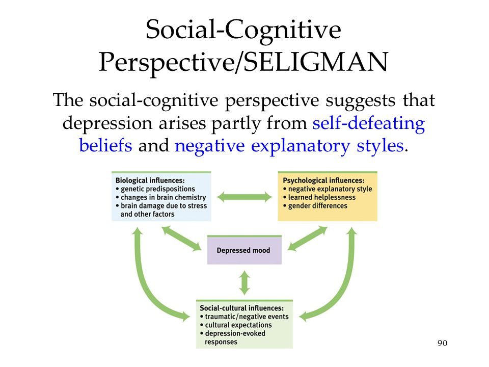 Social-Cognitive Perspective/SELIGMAN