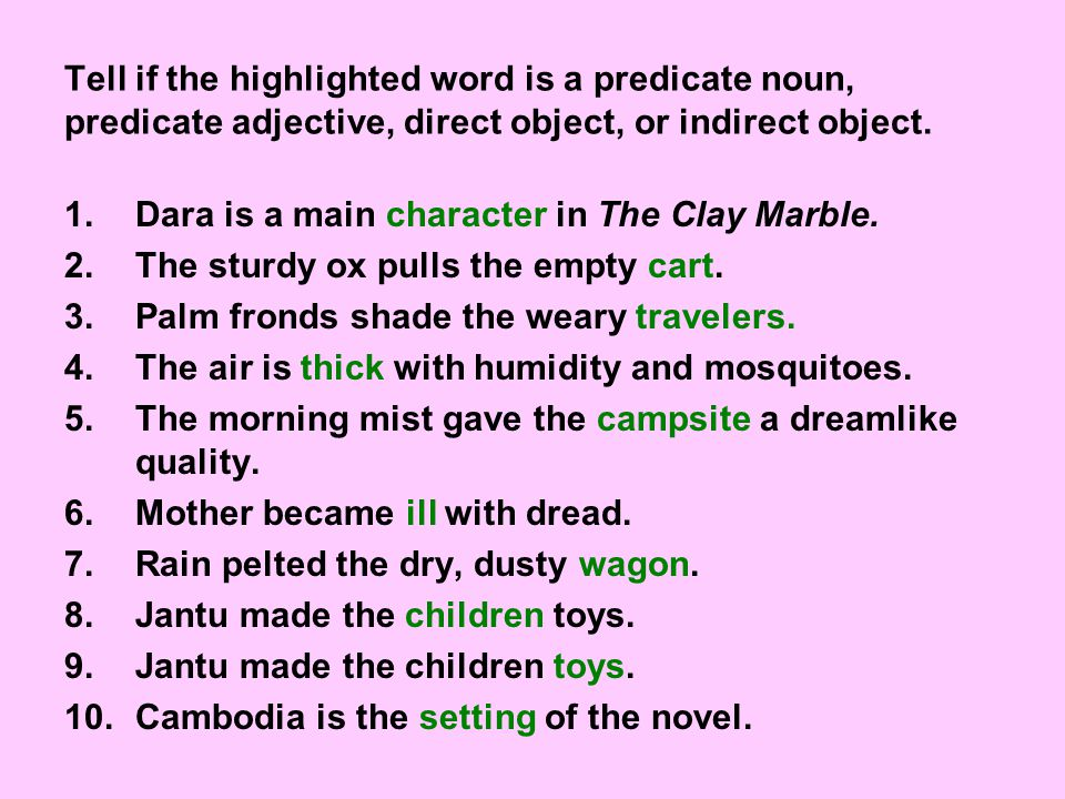 Tell if the highlighted word is a predicate noun, predicate adjective, direct object, or indirect object.