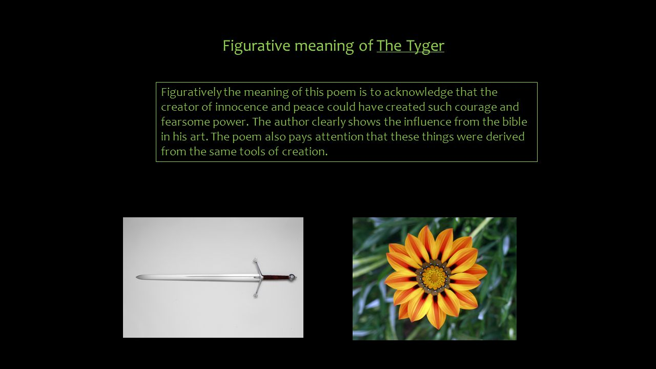 Figurative meaning of The Tyger