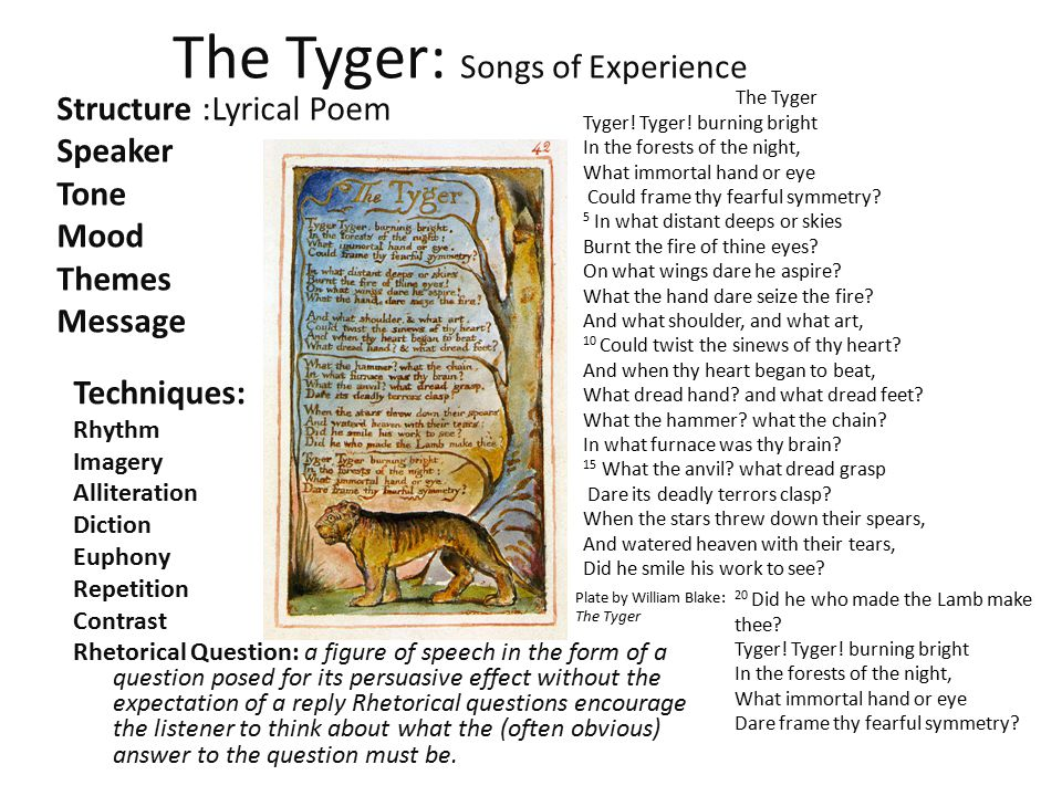 The Tyger: Songs of Experience