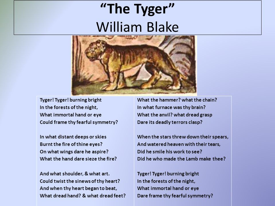 The Tyger William Blake