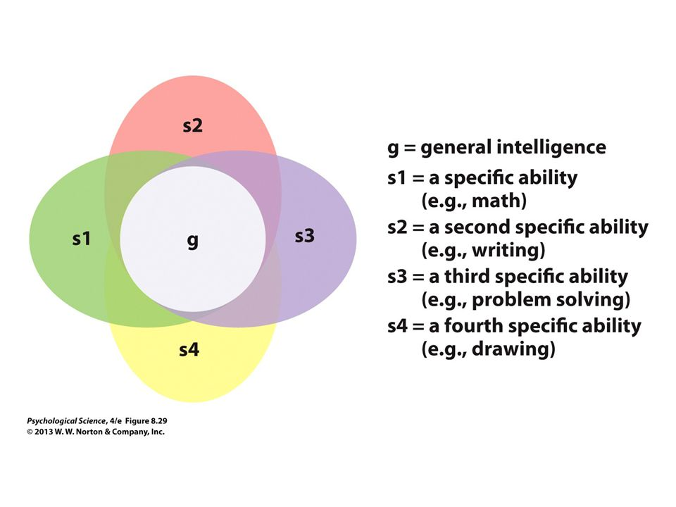 FIGURE 8.29 General Intelligence as a Factor