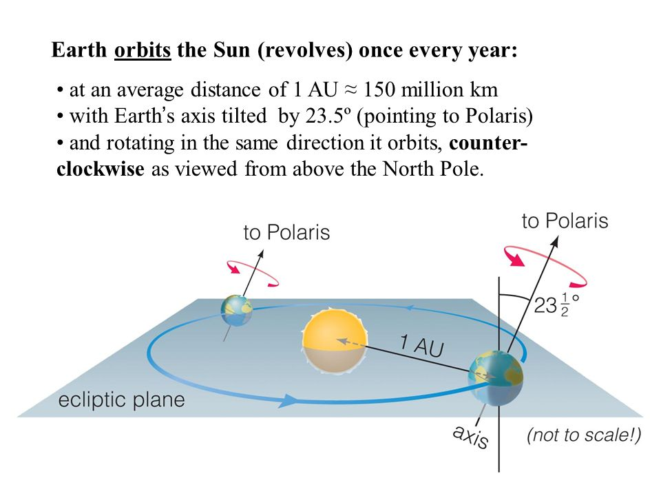 Earth orbits the Sun (revolves) once every year: