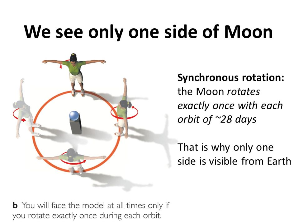We see only one side of Moon