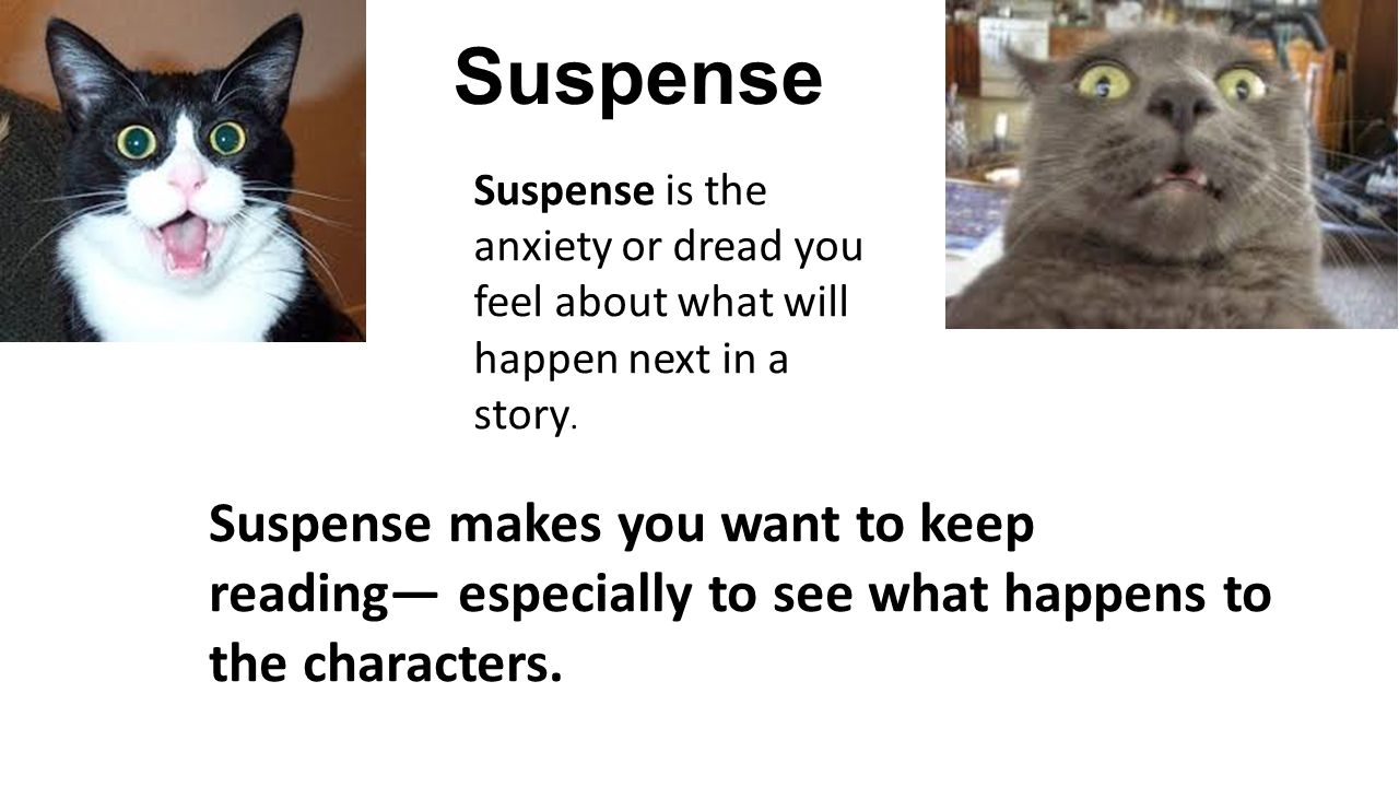 Suspense Suspense is the anxiety or dread you feel about what will happen next in a story.