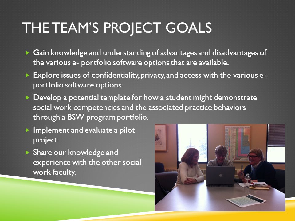The Team's Project Goals