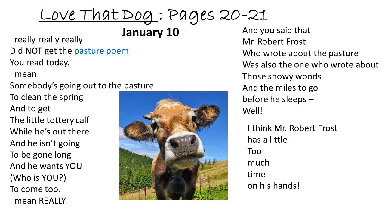 Love That Dog : Pages 20-21 January 10 And you said that
