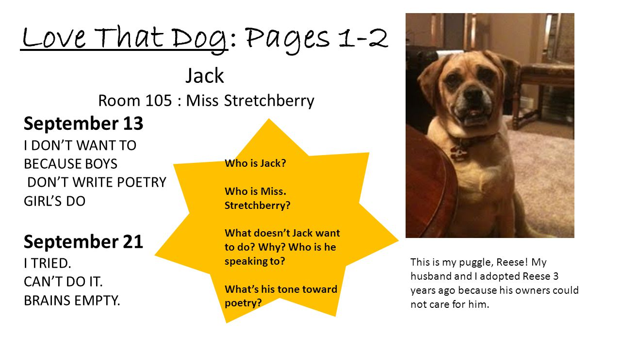 Love That Dog: Pages 1-2 Jack