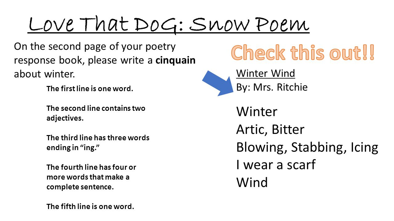Love That DoG: Snow Poem