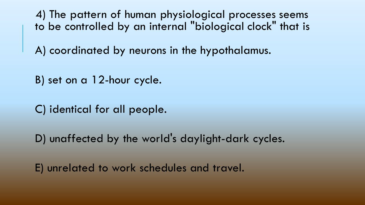 4) The pattern of human physiological processes seems to be controlled by an internal biological clock that is A) coordinated by neurons in the hypothalamus.