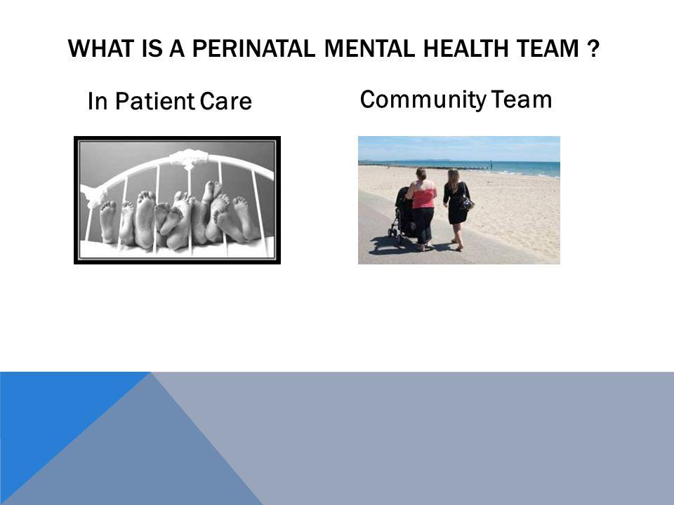 What is a Perinatal Mental Health Team