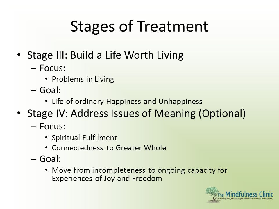 Stages of Treatment Stage III: Build a Life Worth Living