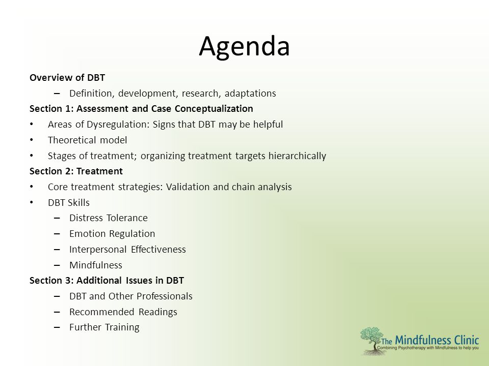 Agenda Overview of DBT Definition, development, research, adaptations