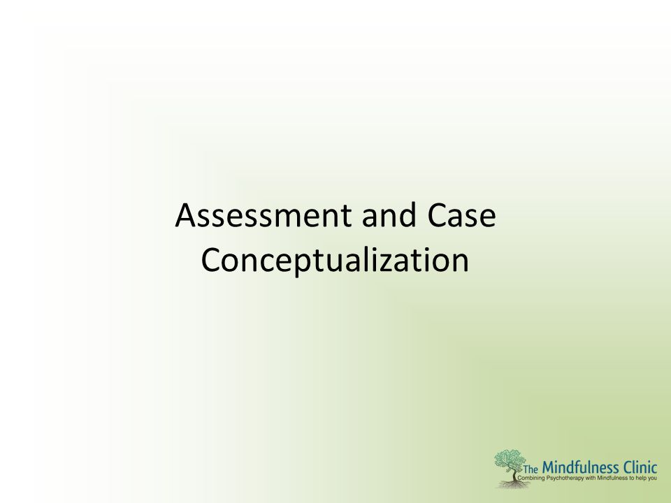 Assessment and Case Conceptualization