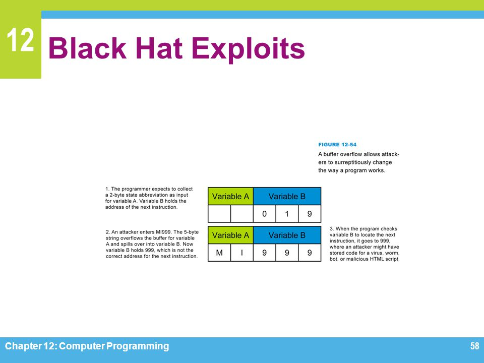 Black Hat Exploits Figure 12-54 Chapter 12: Computer Programming