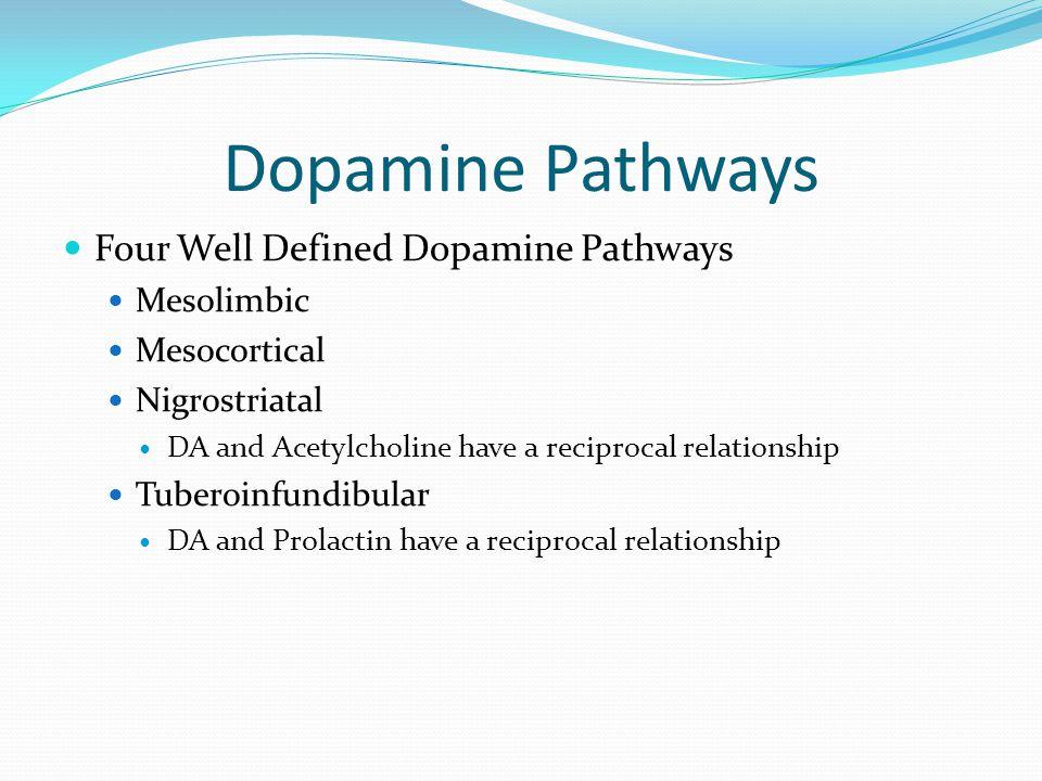 Dopamine Pathways Four Well Defined Dopamine Pathways Mesolimbic