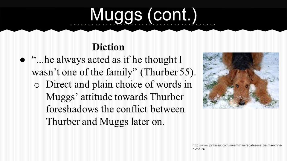 Muggs (cont.) Diction. Muggs was afraid of only one thing, an electrical storm (Thurber 62).