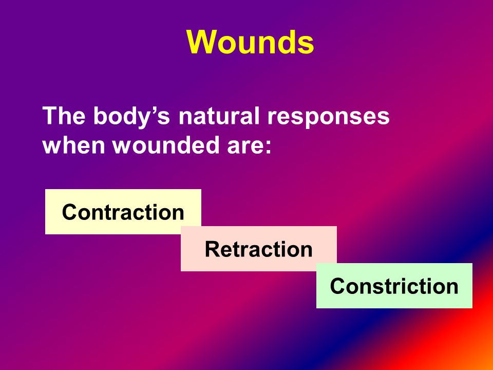 Wounds The body's natural responses when wounded are: Contraction
