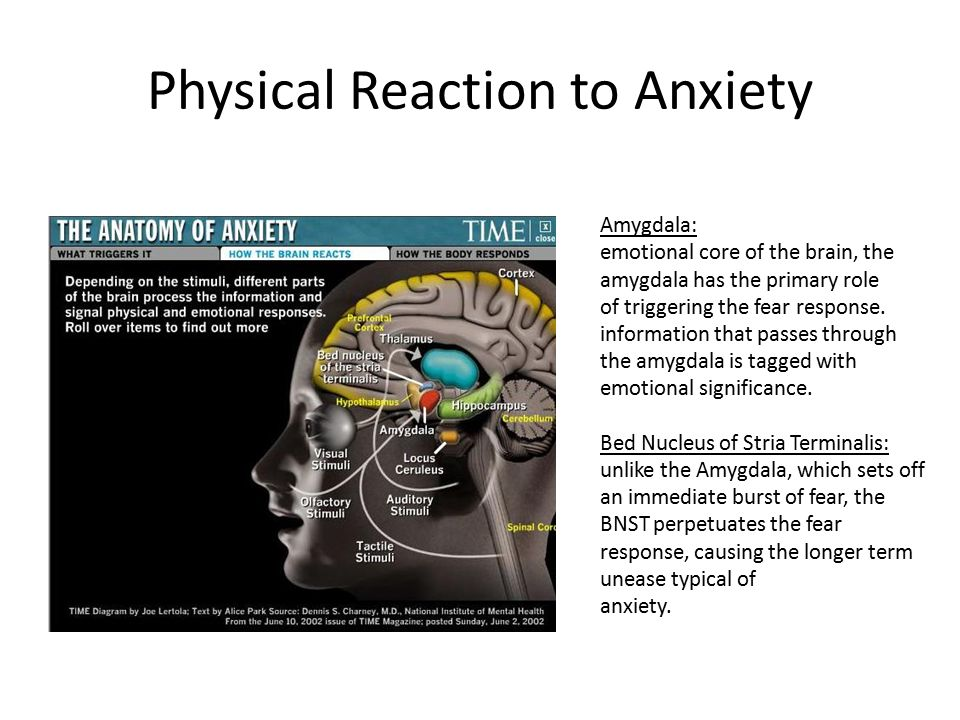 Physical Reaction to Anxiety