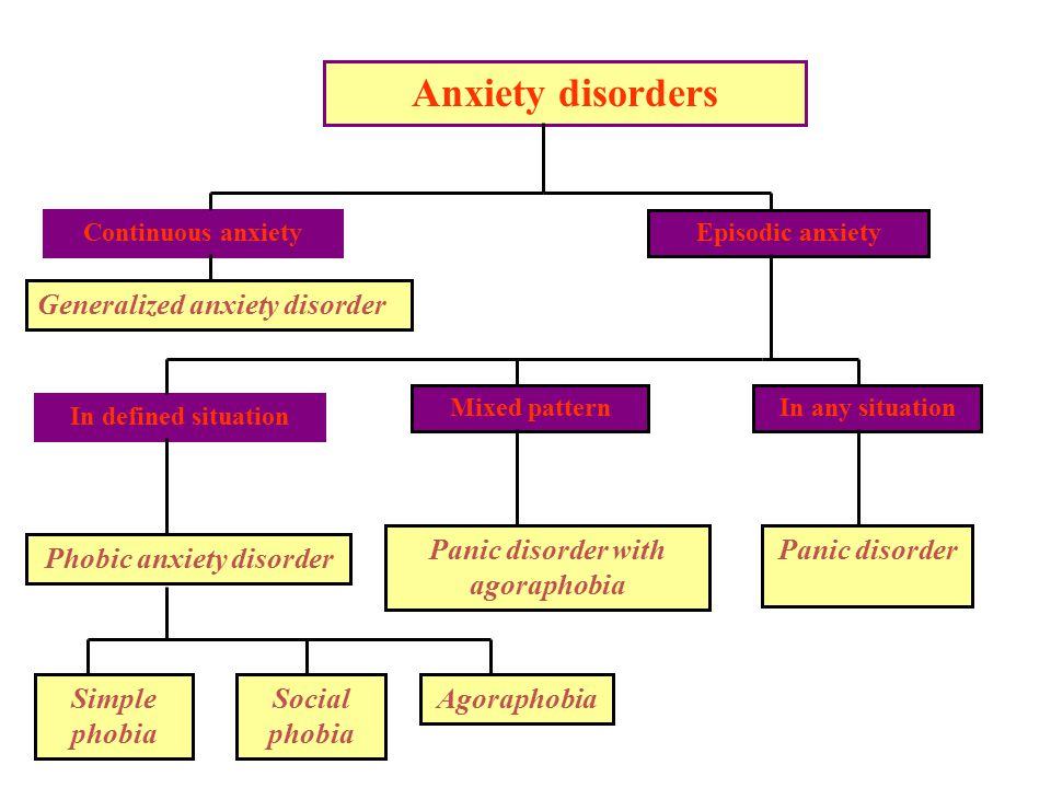 Panic disorder with agoraphobia Phobic anxiety disorder
