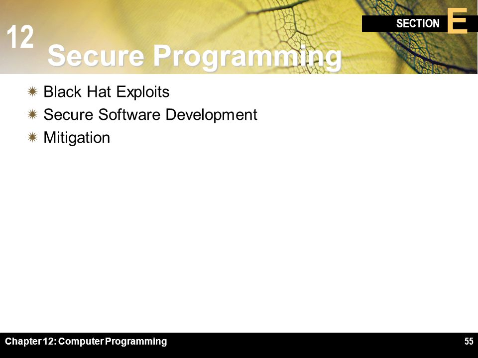Secure Programming Black Hat Exploits Secure Software Development