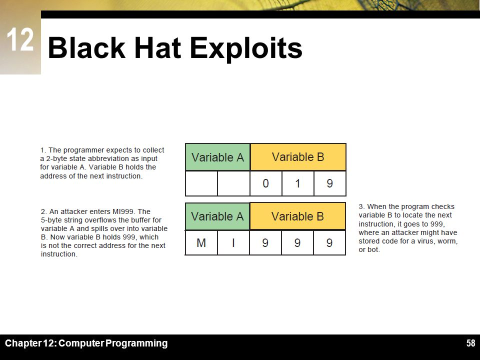 Black Hat Exploits Figure 12-53 Chapter 12: Computer Programming