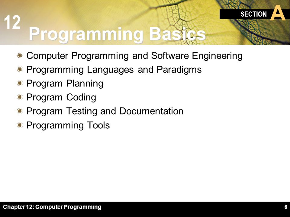 Programming Basics Computer Programming and Software Engineering
