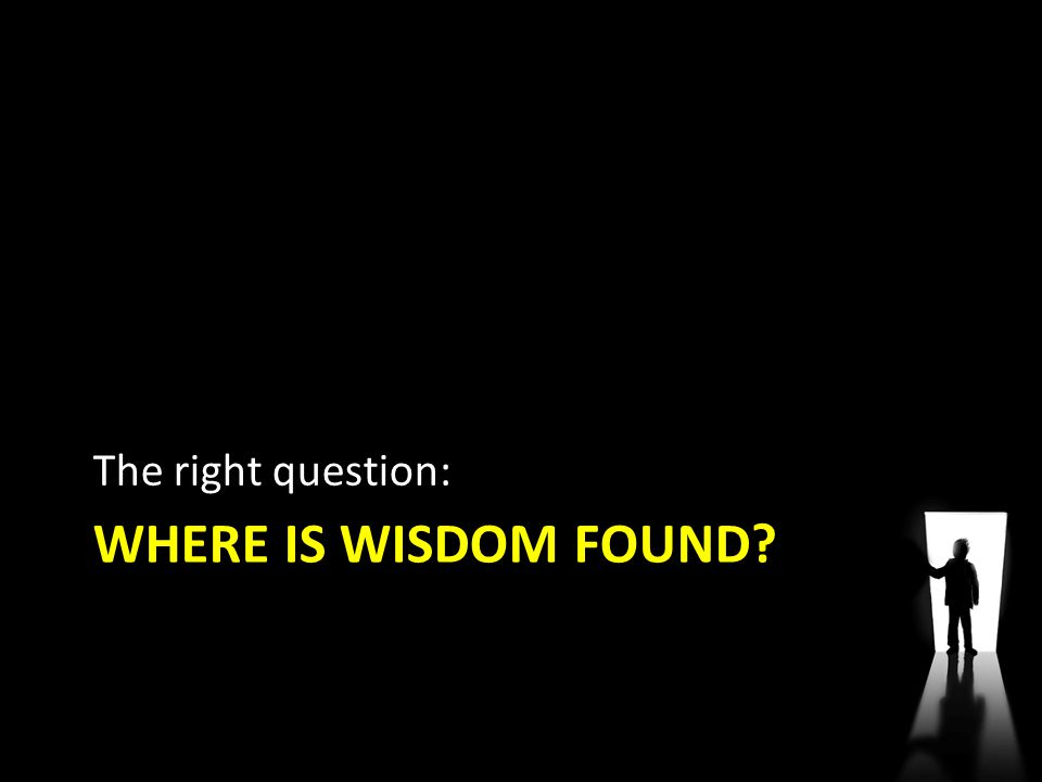 The right question: Where is wisdom found