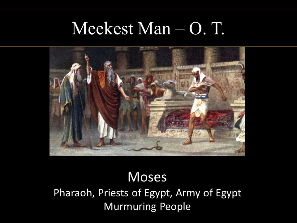 Pharaoh, Priests of Egypt, Army of Egypt