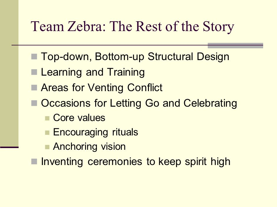 Team Zebra: The Rest of the Story