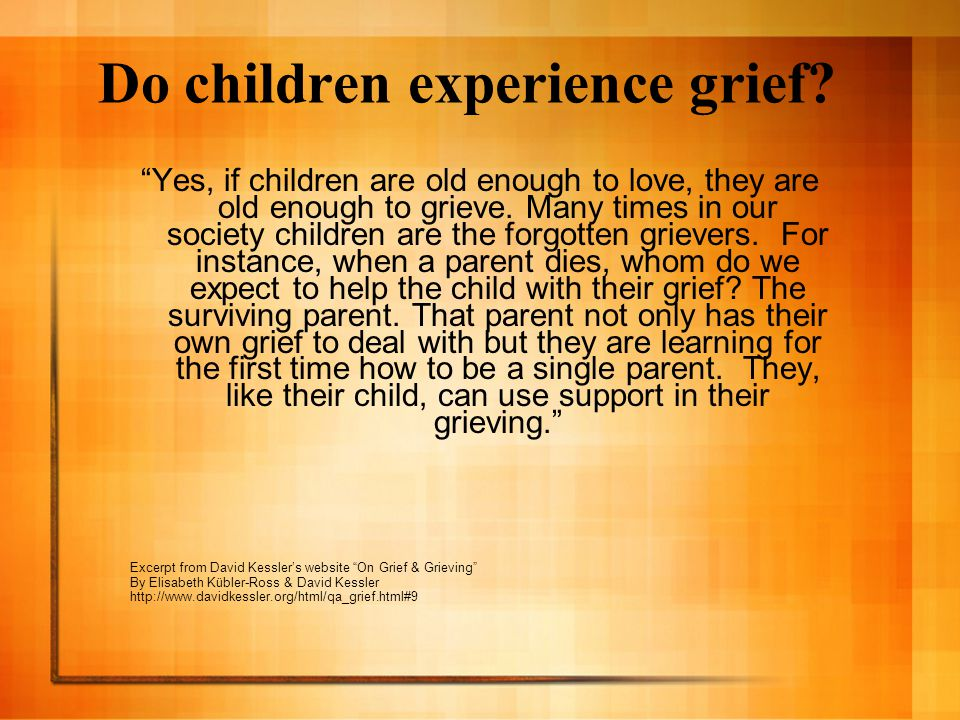 Do children experience grief