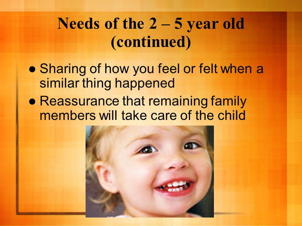 Needs of the 2 – 5 year old (continued)