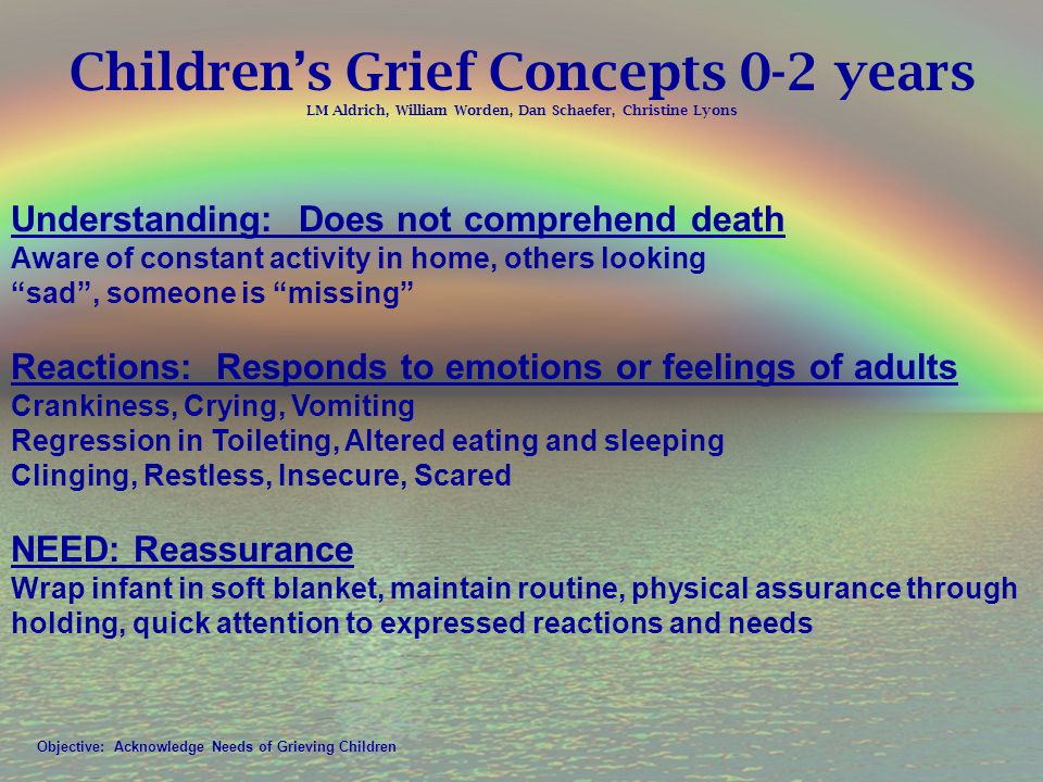 Children's Grief Concepts 0-2 years LM Aldrich, William Worden, Dan Schaefer, Christine Lyons