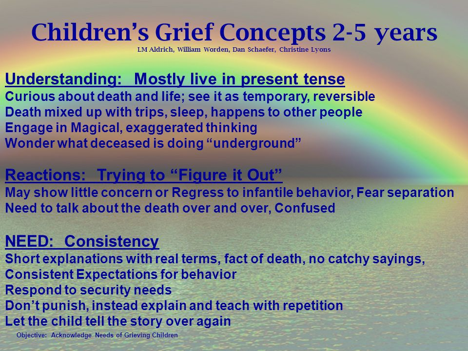 Children's Grief Concepts 2-5 years LM Aldrich, William Worden, Dan Schaefer, Christine Lyons