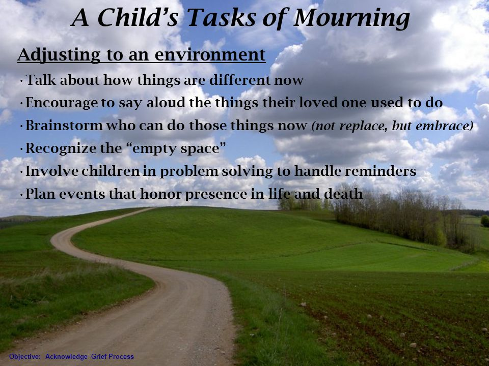 A Child's Tasks of Mourning