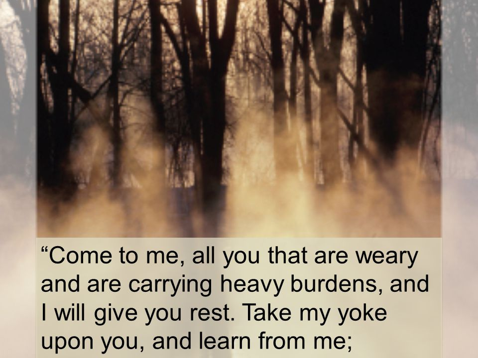 Come to me, all you that are weary and are carrying heavy burdens, and I will give you rest.