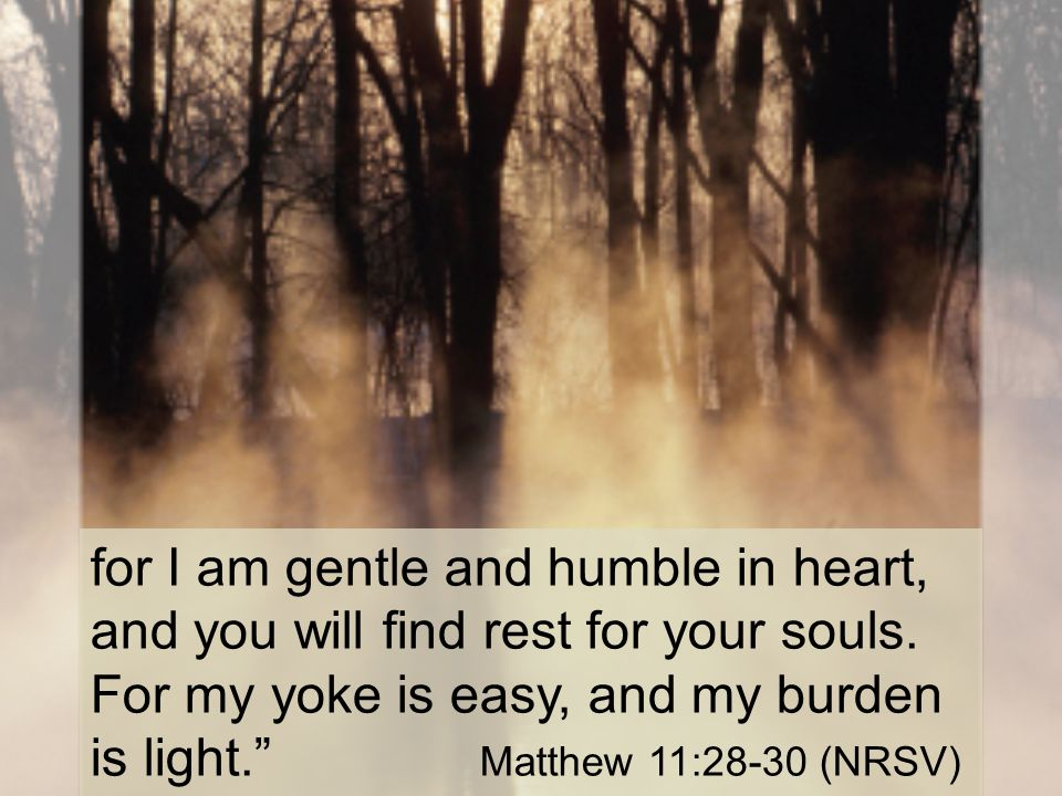 for I am gentle and humble in heart, and you will find rest for your souls.