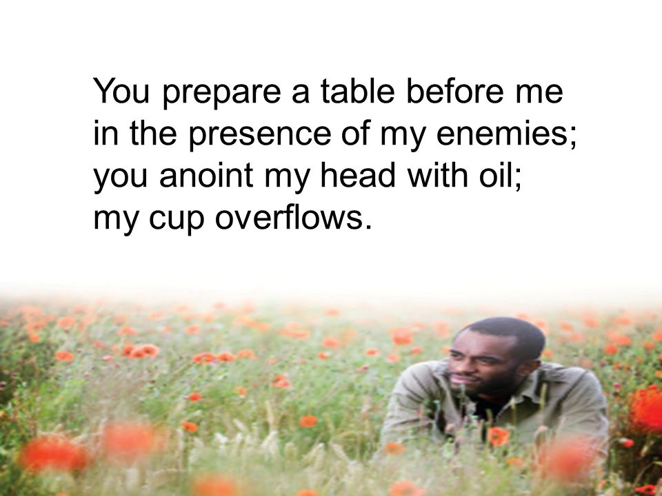 You prepare a table before me in the presence of my enemies; you anoint my head with oil;