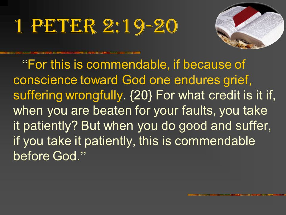 1 Peter 2:19-20