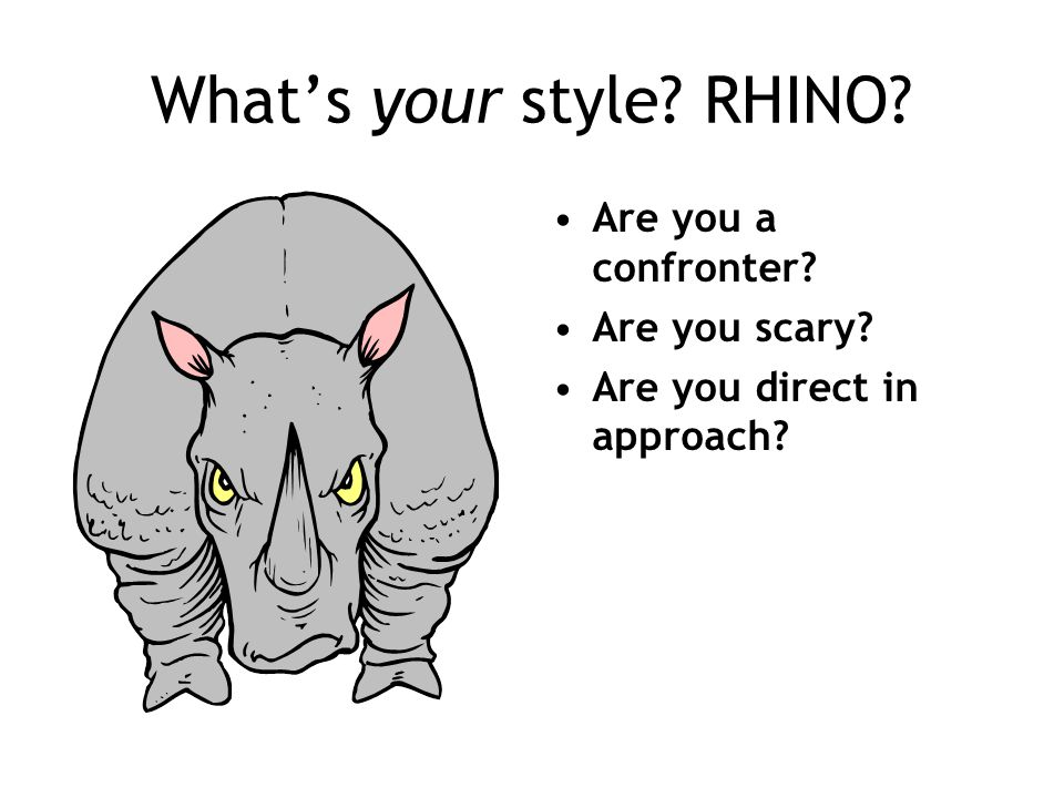 What's your style RHINO